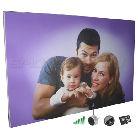 Tablou Canvas Personalizat Echipat cu Microfon/Reportofon/Micorcamera Spion [JK201]